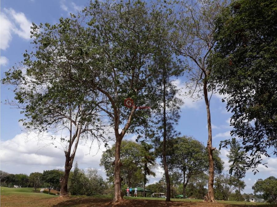 se vende terreno brisas del golf club del golf 129965m2