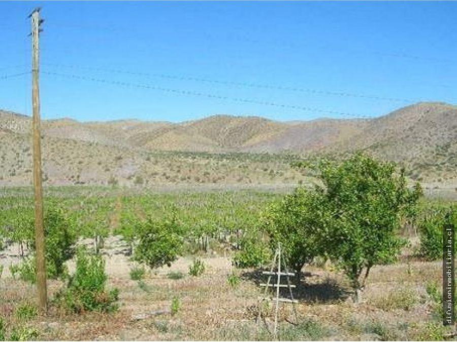 la serena fundo agricola 993 hectareas con instalaciones la higuera