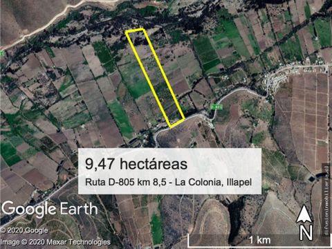 illapel parcela agricola con 2 pozos y acciones agua paltos nogales
