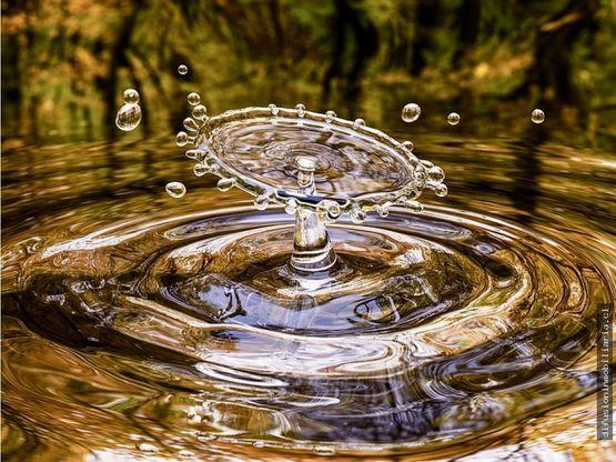 illapel acciones de agua canal el molino la colonia
