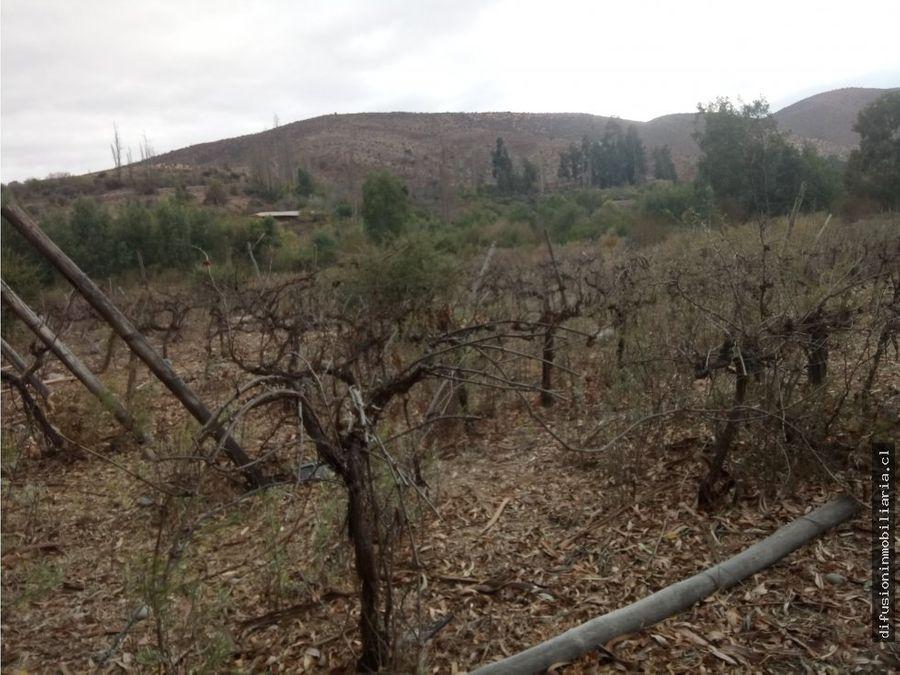 illapel parcela agricola 1032 hectareas 11 acciones de agua de riego