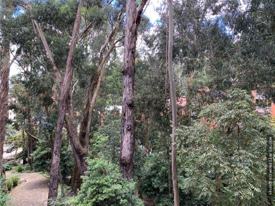 vendo apartamento bosque medina
