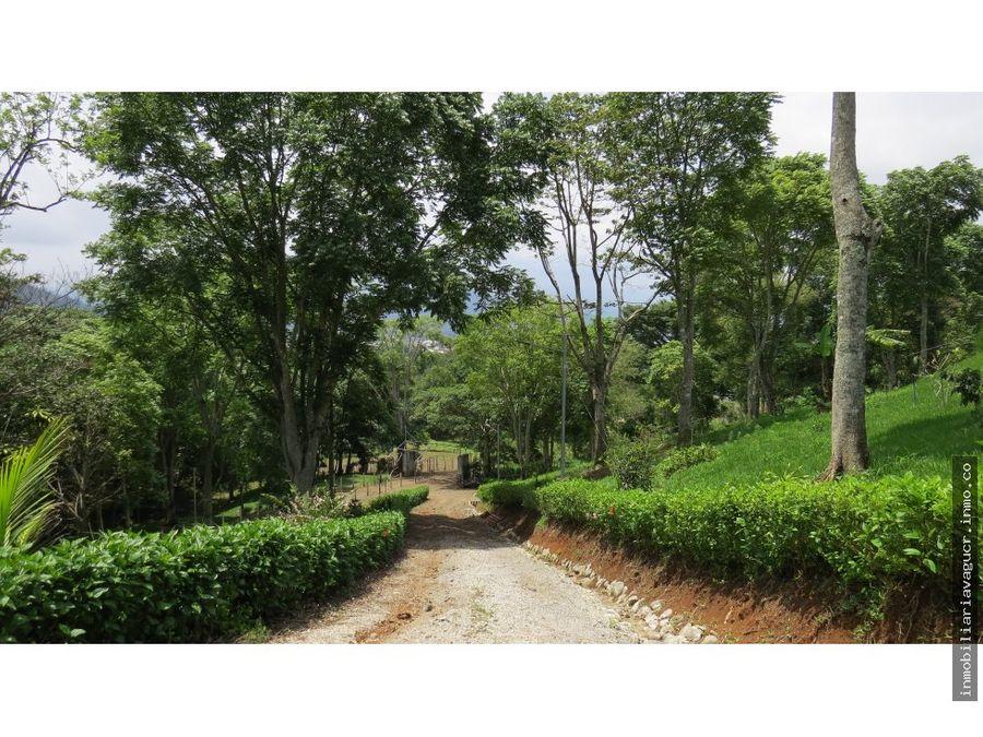 extensa propiedad en venta palmares alajuela