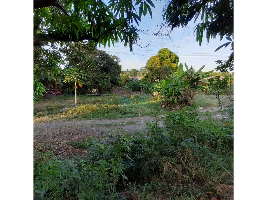 venta de terreno en juan diaz ollu3228