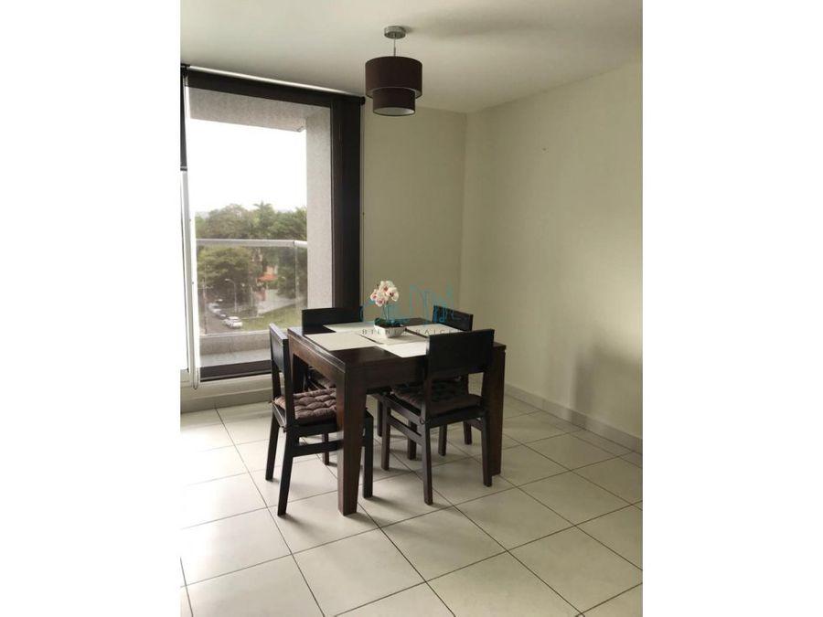 alquiler de apartamento en clayton