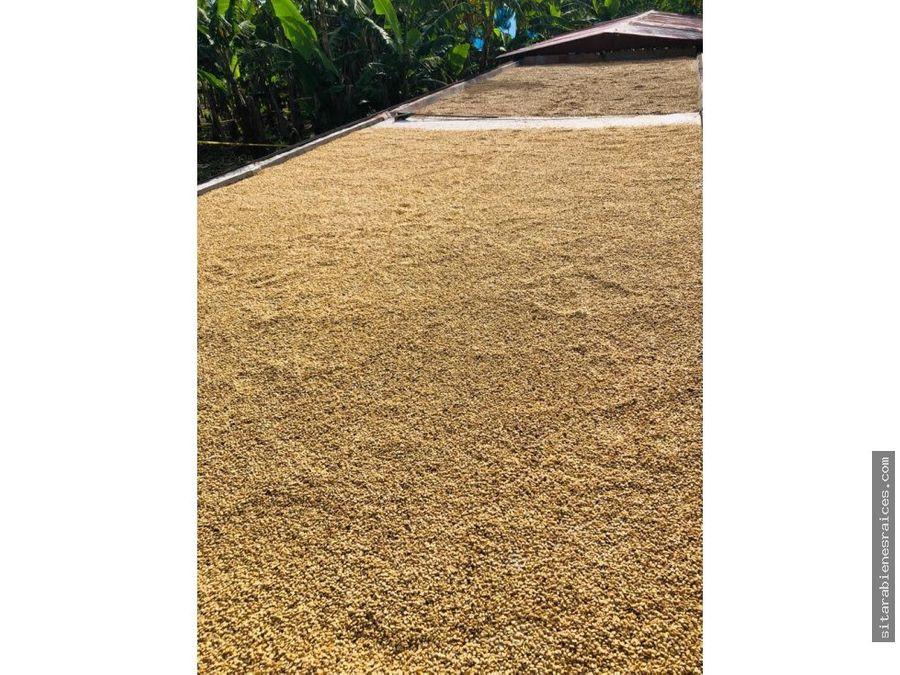 venta de finca granja cafetera quimbaya