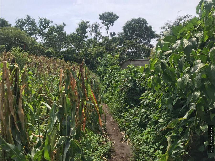 vendo terreno en suchitepequez