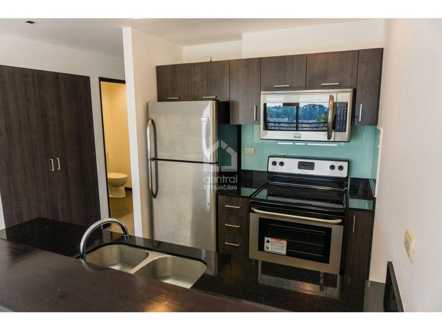 apartamento 1 habitacion zona 10