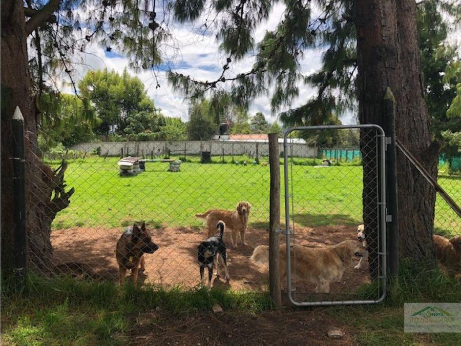 arriendovendo terreno hotel guarderia canina