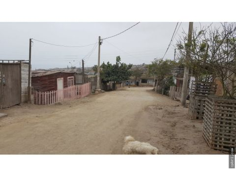 venta terreno asoc la victoria pachacutec 160 m2