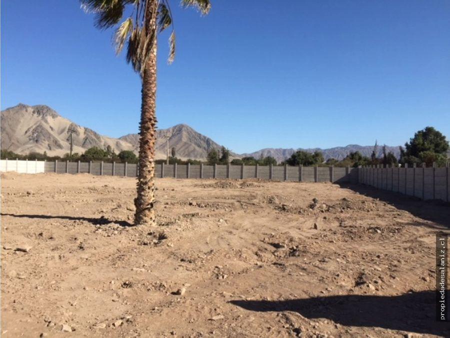 arriendo terreno 12 hectarea copiapo