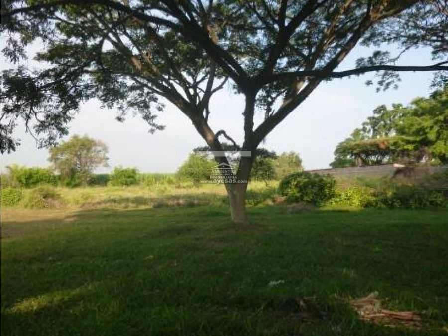 lote en venta en palmira 1300 m2 calipalmira