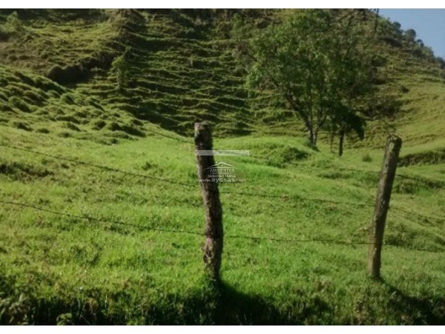 finca tenerife el cerrito valle del cauca