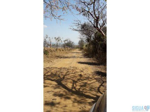 terreno en venta jocotillo km 37 villa canales