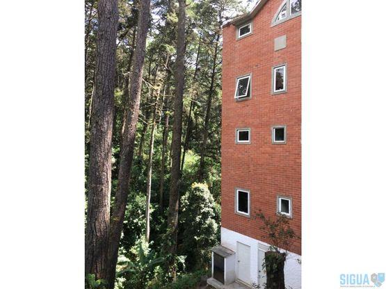 apartamento en renta los arroyos km12 muxbal