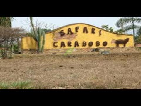 parcela en safari carabobo via campo carabobo