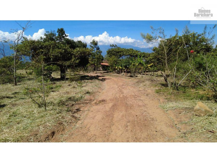 vendo finca reserva sanjose barichara 28800 mts2