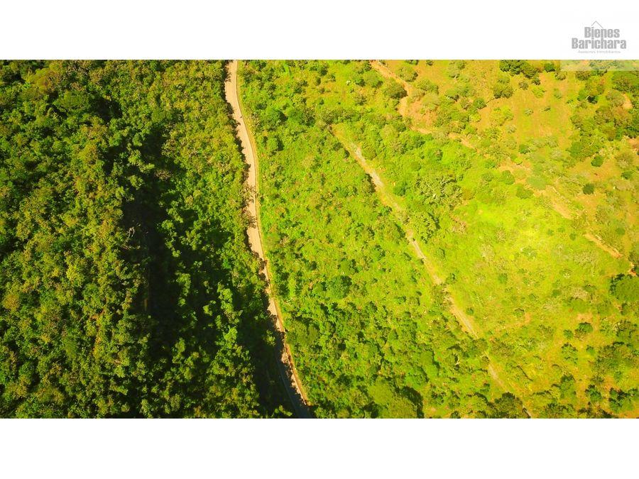 vendo lote mesetas barichara vda lubigara 10631 mts