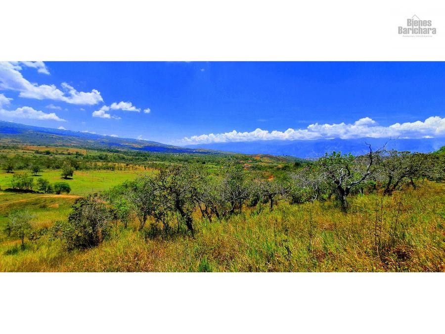vendo lote villa gabriela barichara vda llano higueras 2500 mts2