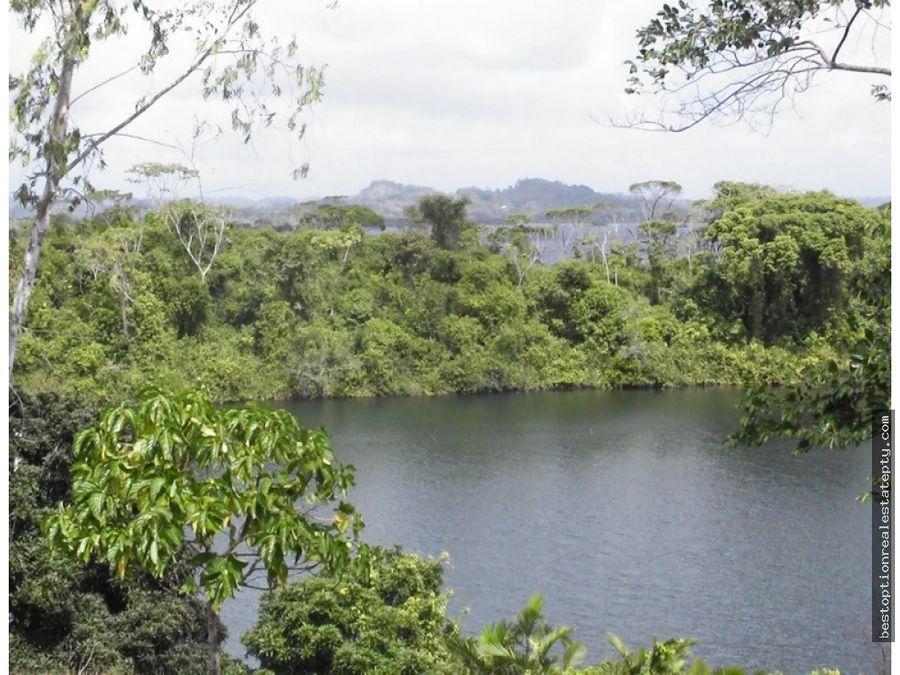 vendo amplio terreno colindante al lago gatun