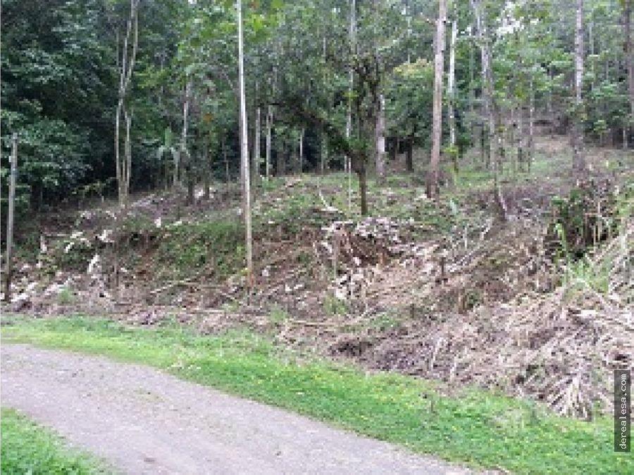 lotes para quintas en penas blancas de san ramon