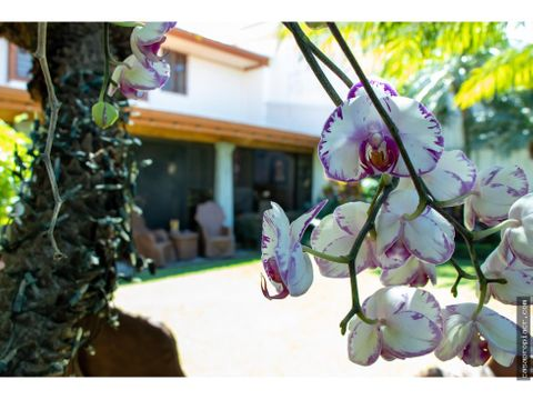 casa orquideas en rohrmoser pavas