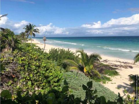 beautiful beachfront lot in sian kaan