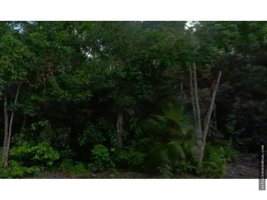 1 hectarea en la veleta tulum region 15