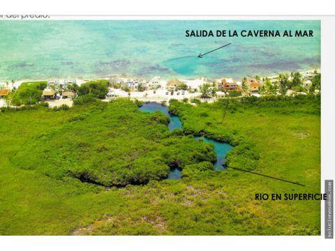 326 hectareas carretera playa y 2 cenotes