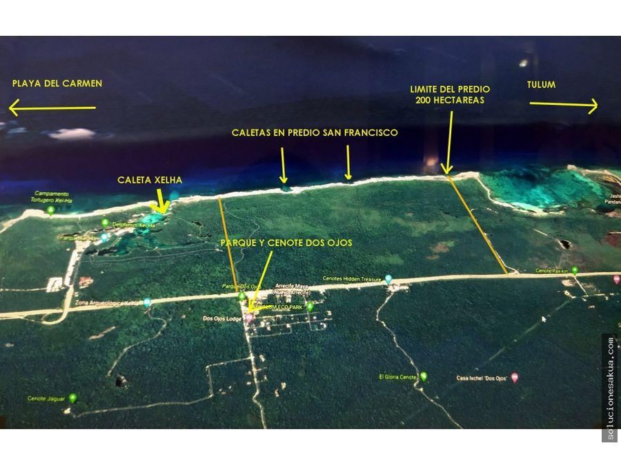 hotel land in tulum 200 hectars 1650 beachfront meters