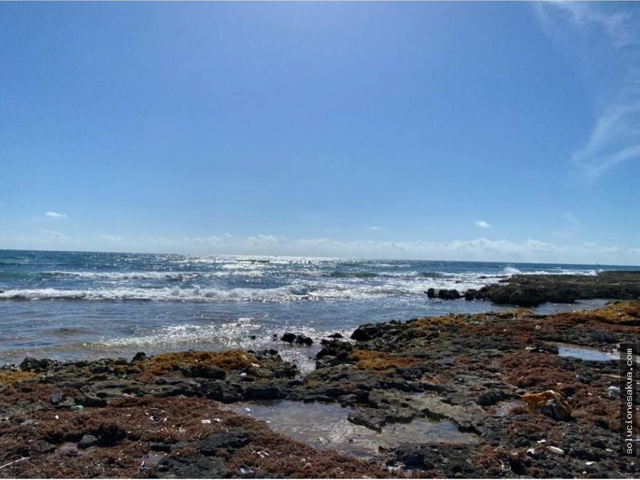 terreno frente al mar en punta sur akumal tulum