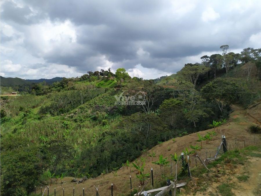 finca de 7 hectareas con cafe platano y cana