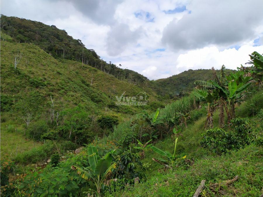 finca de 15 hectareas con 8 peceras y rio san roque ant