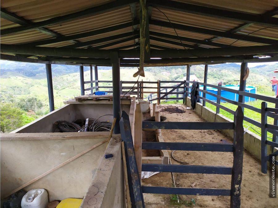 fincanacimientos de agua y potreros de calidad