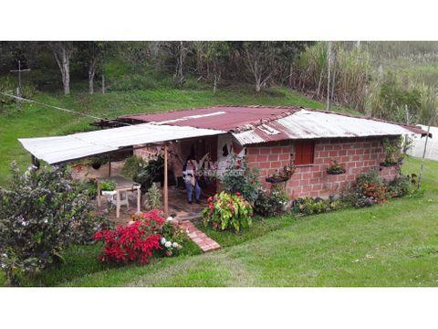 finca de 8 hectareas con lagos cafe y cana