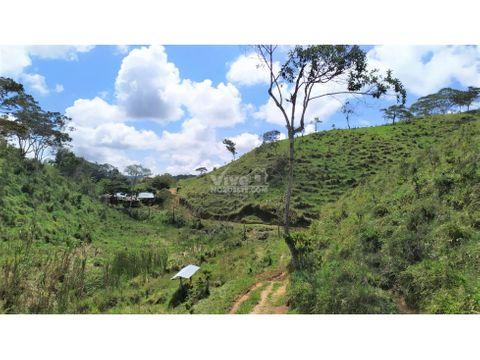finca de 11 hectareas con potreros monte y agua