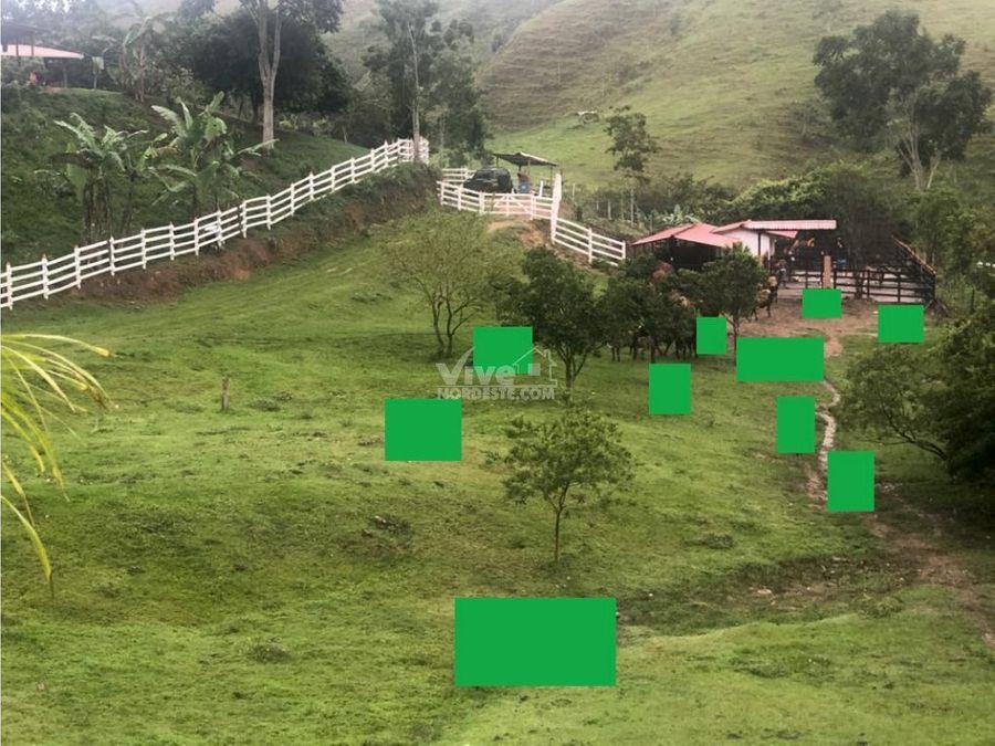 finca productora de 292 hectareas en maceo antioquia