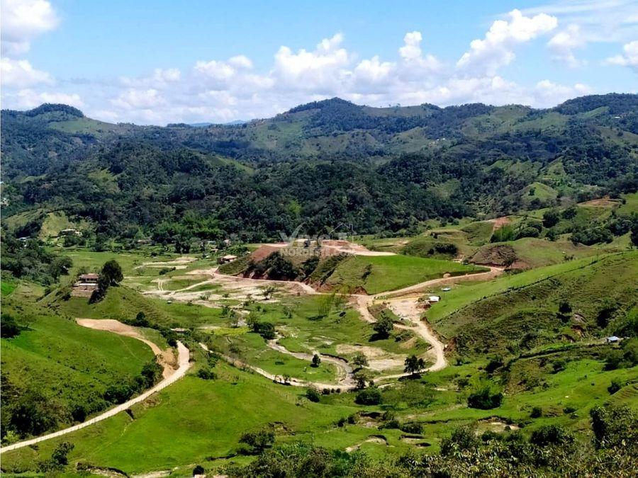 lotes en proyecto campestre villa laura san roque antioquia