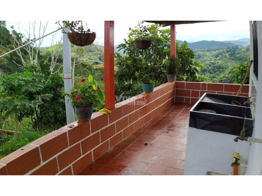 finca con potreros y cultivo de platano y yuca