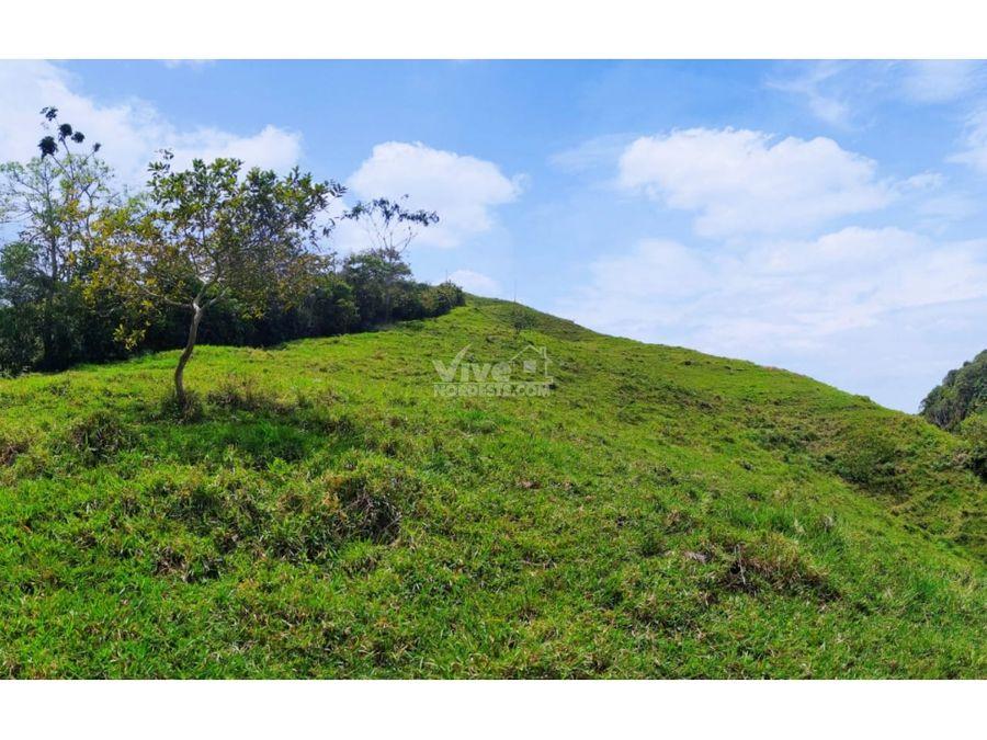 lote de 1 hectarea en la via san roque santo domingo