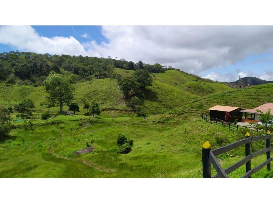 finca de 10 hectareas con casa nueva establo y dos pesebreras