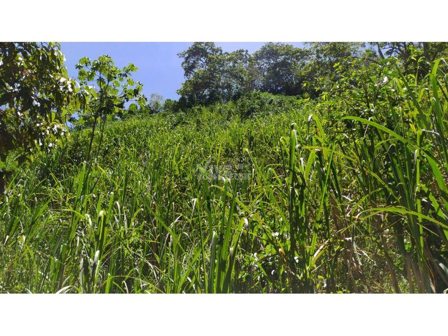 finca de 25 hectareas con trapiche cafe lago potreros y mas
