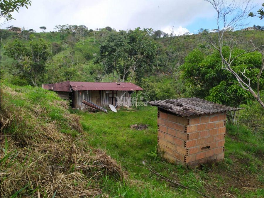 dos hectareas por 80 millones en san roque ant