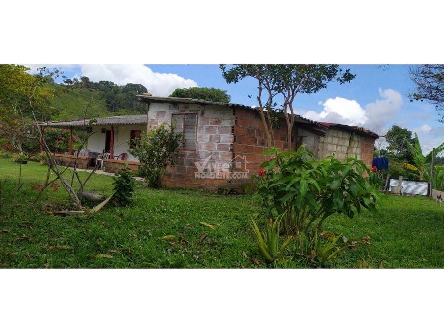 finca de 3 hectareas con potrero frutales y nacimiento de agua