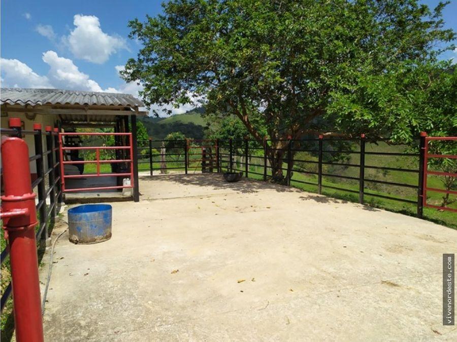 finca ideal para produccion y ganado