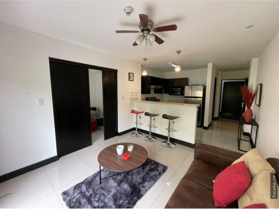 alquiler apartamento montesol