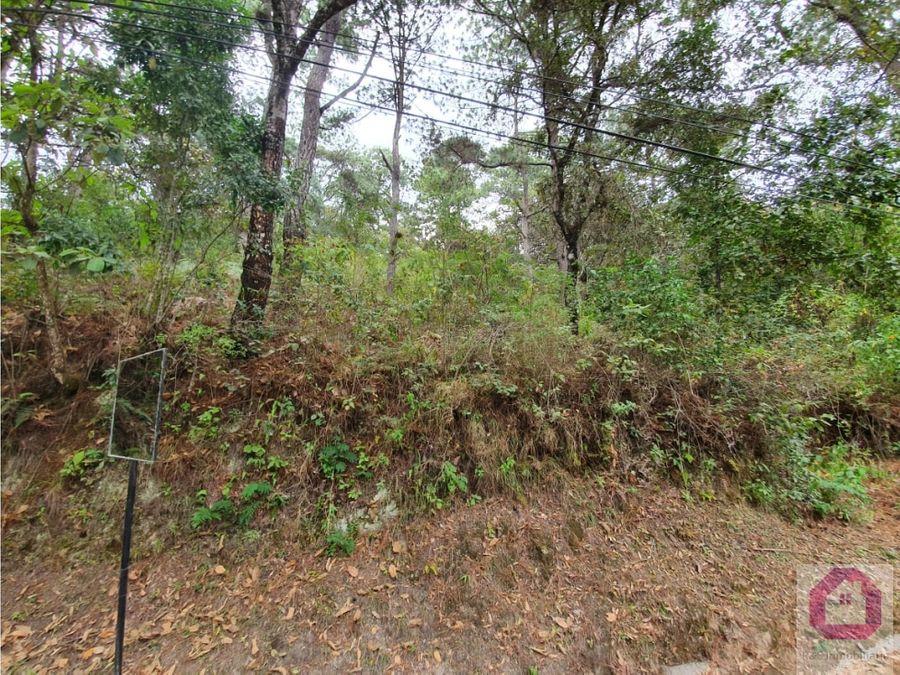 terreno en el encinal tronco 17 sobre avenida principal