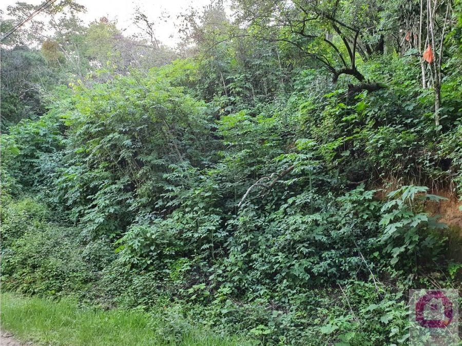 terreno en venta tronco 3 el encinal