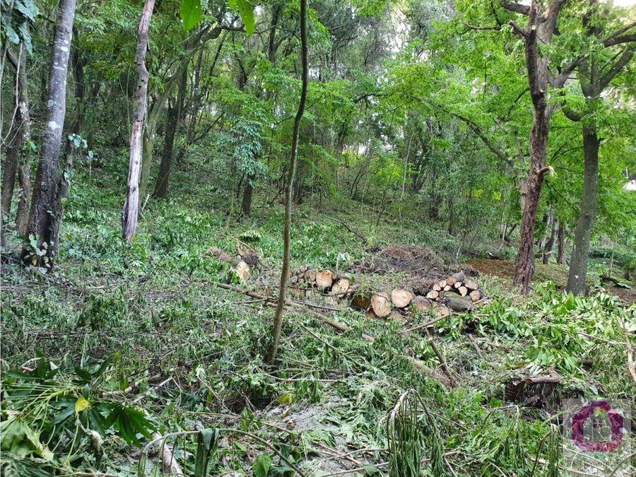 terrenos en venta tronco 3 el encinal