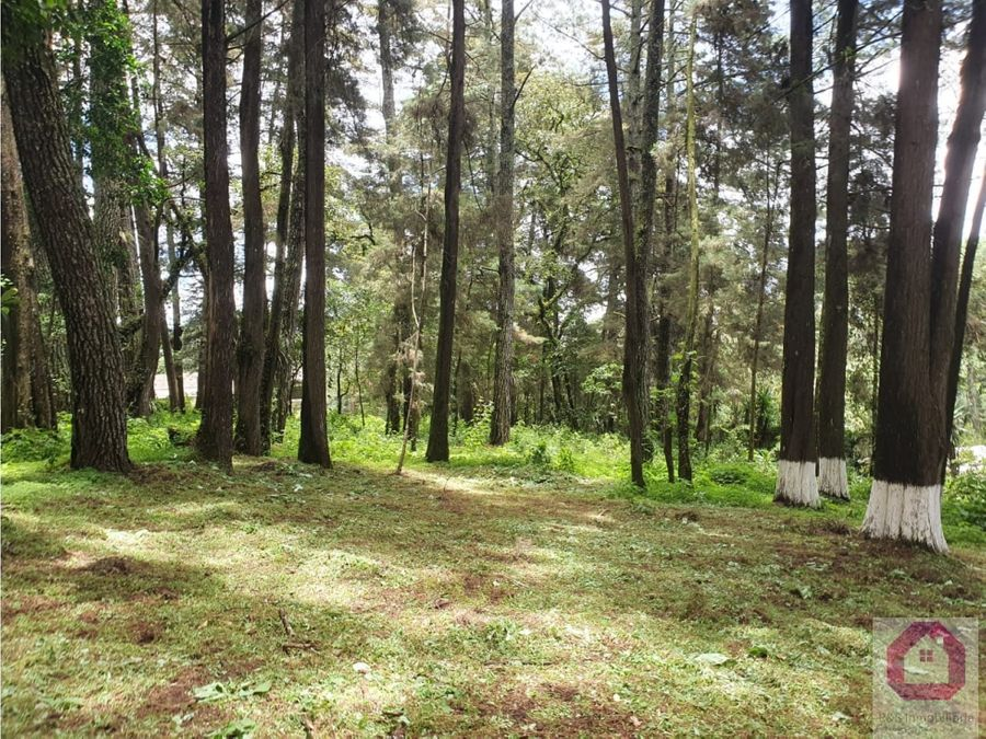 terreno plano en venta tronco 1 el encinal